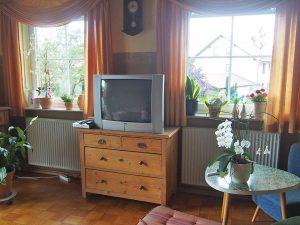 Das Wohnzimmer - vor der Renovierung